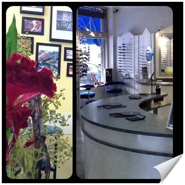 negozio new 2